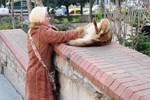 Hayvanseverliliğiyle takdir topladı