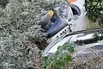 İki uçak düştü, 8 kişi öldü!..