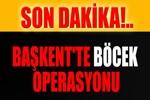 Ankara'da 'böcek' operasyonu!..