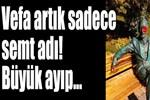 Merhum Süleyman Seba'nın heykeline saldırı!..