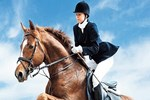 İthal atlara 'şampiyon' kriteri!