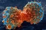 Meyveli soda kanser yapıyor!