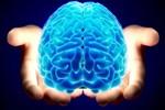 Beynimiz sabahları daha büyük!..