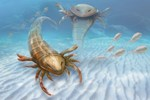 İnsan boyunda akrep fosili!