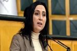 6 HDP'li danışman için gözaltı kararı