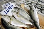 Omega-3 için balığı yağda kızartmayın!