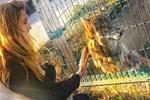Tuğba Özay'ın derin hayvan sevgisi