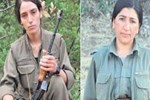 PKK'ya sniper darbesi!