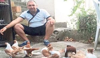 2 milyon liraya 4 bin güvercin almış!