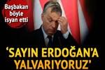 Macaristan Başbakanı Orban: