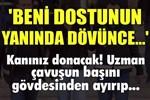 Sivas'ta kan donduran