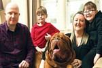 Köpeği kör olmaktan kurtardı!..