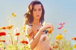 Katy Perry 'korsanların' mağduru oldu