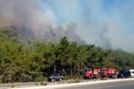 Kemer'de dev orman yangını!
