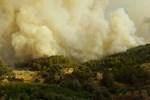 Antalya Kumluca'da yine yangın başladı!..