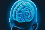 Beyne iyi gelen 5 egzersiz