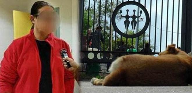 Köpek bıçaklayan profesör ifadeye davet edildi