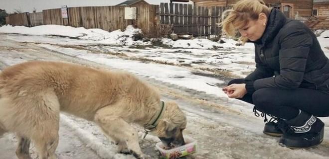 Pınar Altuğ hayvanları unutmadı