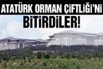 Atatürk Orman Çiftliği'ni bitirdiler!