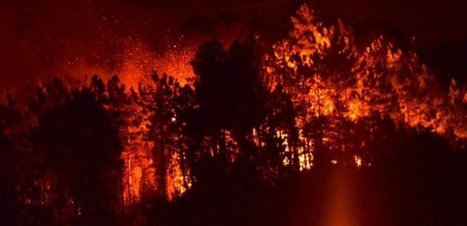 Sürmene'deki yangın kontrol altına alındı!