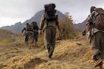 Suudi Arabistan gazetesinden PKK'lı teröristle
