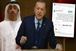 Erdoğan'dan Lawrence'in torununa anladığı dilden cevap!