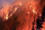 Kasım ayında 52 orman yangını çıktı!
