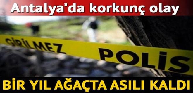 Antalya'da dehşet: Bir yıl ağaçta asılı kaldı