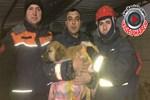 Yavru köpek günler sonra kurtarıldı