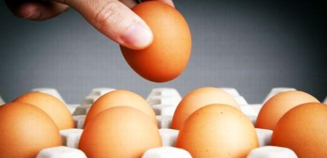Yumurta ile 15 günde 15 kilo verin!..