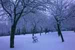 Ankara'da kar sürprizi!