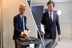 Hollanda'daki seçimde büyük sürpriz!