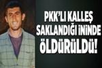 PKK'lı kalleş, saklandığı ininde öldürüldü