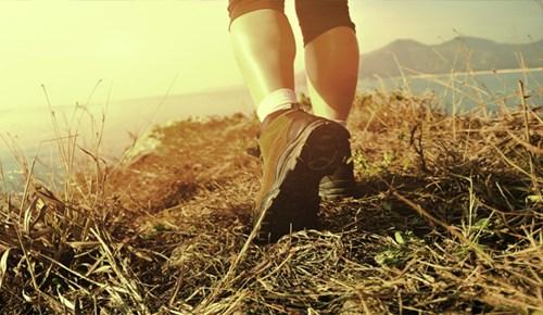 Mutlu olmak için doğada yürüyün