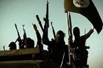 Yaban domuzları DEAŞ'lı üç teröristi öldürdü