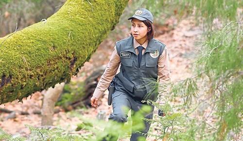 İzmir'in ormanları Betül'e emanet