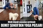 Demet Şener'den yoga pozları