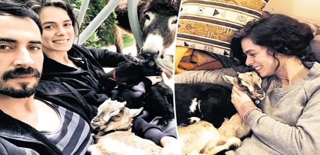 Özge Özpirinçci iki keçi sahibi oldu