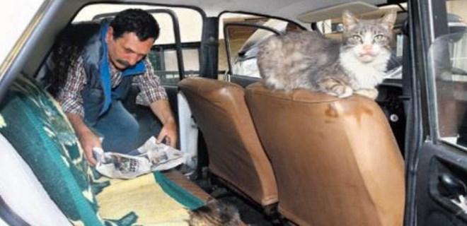 Aldığı arabayı kedilere yuva yaptı