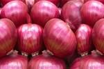 Kırmızı soğan kansere düşman