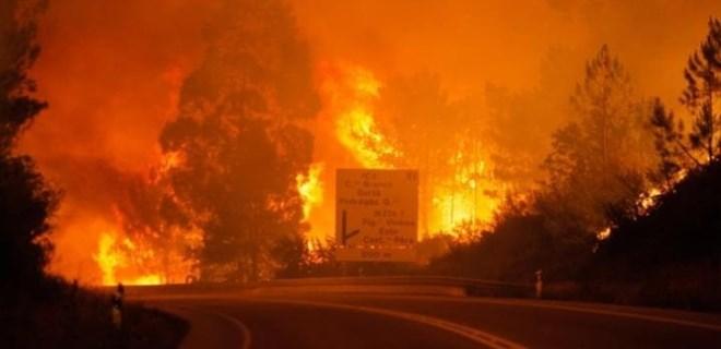 Portekiz'de korkunç orman yangını!