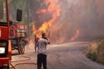 Alanya'da orman yangını!...