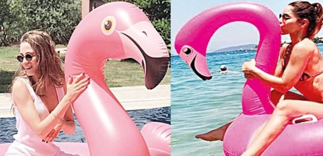 Ünlüler dünyasında 'flamingo' modası patladı!