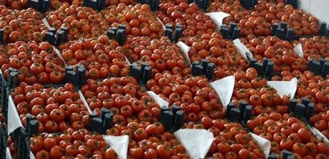 Rusya'dan çok önemli domates açıklaması!