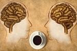 Çay ve kahve beyni berraklaştırıyor