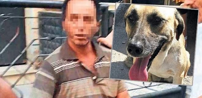 Karabaş'tan kaçan sapık cezaevine konuldu!