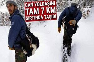 Can yoldaşını 7 kilometre sırtında taşıdı