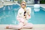 Paris Hilton'dan kayıp köpeği bulana 10 bin dolar