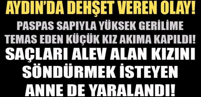 Aydın'da dehşet veren olay!