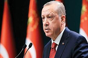 Cumhurbaşkanı Erdoğan'dan hayvan hakları talimatı!